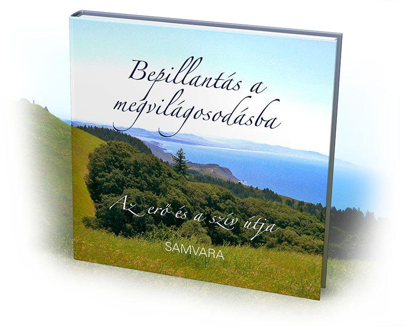 Könyv - Bepillantás a megvilágosodásba